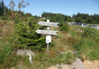 Ausflugsziele im Schwarzwald: Der Lotharpfad an der Schwarzwaldhochstraße