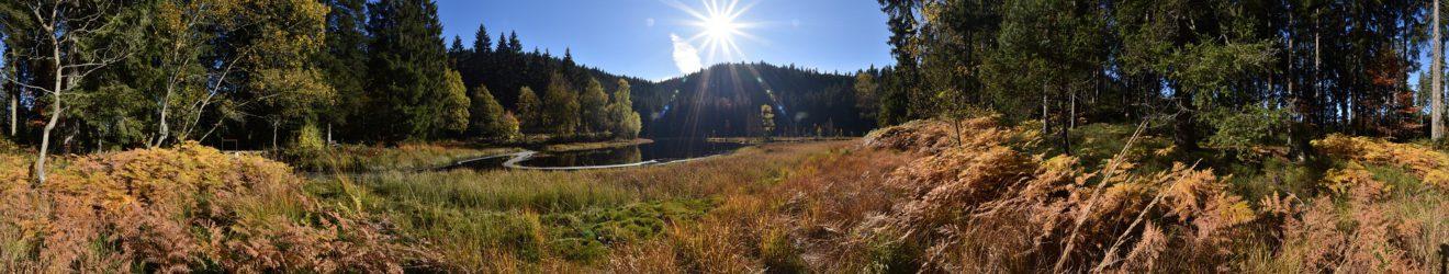 Buhlbachsee im Schwarzwald